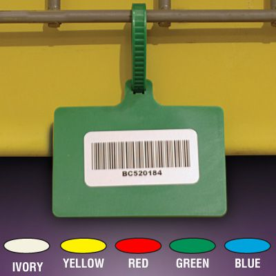 Color-Coded One-Piece Tag