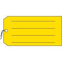 Lined Colored Plastic Tags