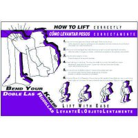 Bilingual How To Lift Wallchart