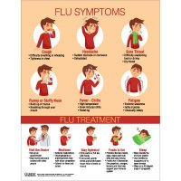 Flu Infographic Poster