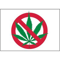 No Smoking Labels - Marijuana Prohibited Graphic