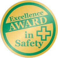 Excellence In Safety Award Pin
