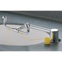 Swing-Activated Eyewash Fixture  S19-270C