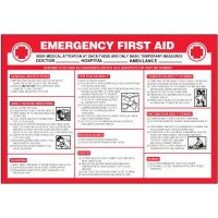 Emergency First Aid Wallchart
