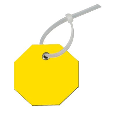 Write-On Octagon Plastic Tags