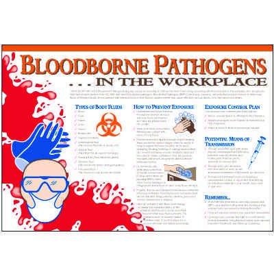 Bloodborne Pathogens Handout