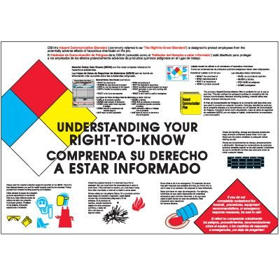 Bilingual Your Right To Know Wallchart