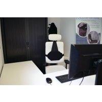 Coussin lombaire Ergoback pour dossier chaise de bureau