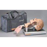 Tête d'intubation adulte