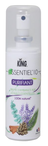 Essentiel'10 Purifiant Air