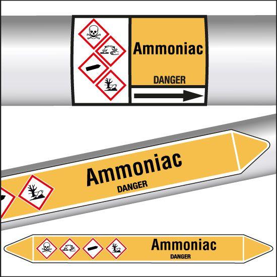 Marqueurs de tuyauterie CLP Ammoniac (photo)