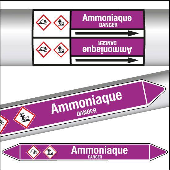 Marqueurs de tuyauterie CLP Ammoniaque
