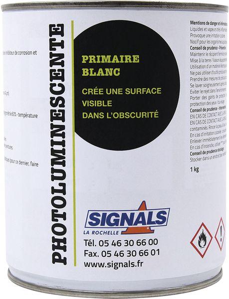 Peinture photoluminescente base solvant (photo)