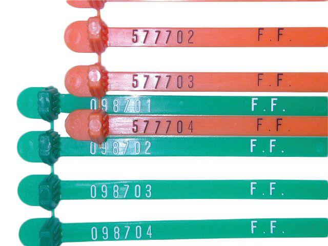 100 Scellés plastique à fermeture automatique carrée (photo)
