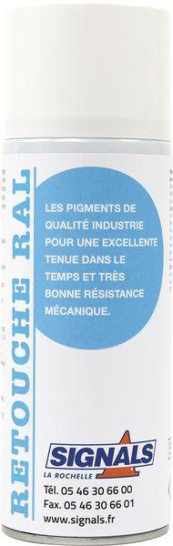 Aérosol de retouche RAL solvanté ou base eau