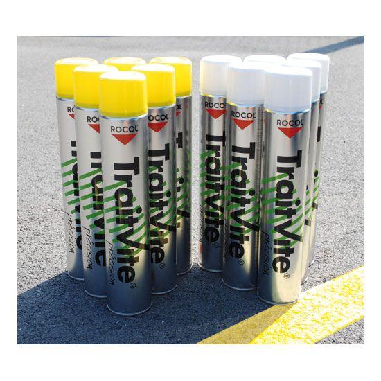 Lot 12 aérosols peinture TraitVite 6 blancs + 6 jaunes (photo)