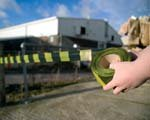 Economy Safety Barrier Tapes Warning of Hazards