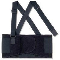 Ergodyne Budget Back Support Belt