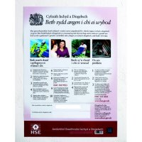 Laminated Paper Welsh Language Health and Safety Law Poster