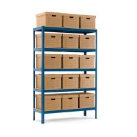 Document Storage Unit with Boxes