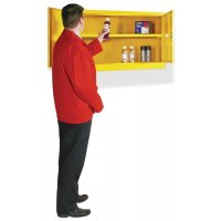 Wall-Mounted Steel Flammable Liquid Storage Cabinet with sump Base