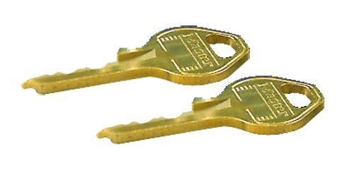 Unique Squire master keyed padlock keys - Security Padlocks