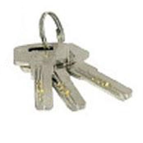 Unique Squire master keyed padlock keys - Security