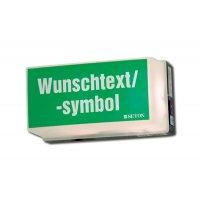 Universal-Rettungszeichenleuchten mit Symbol oder Text nach Wunsch