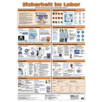 Sicherheit im Labor – Aushang-Set, GHS/CLP-Verordnung