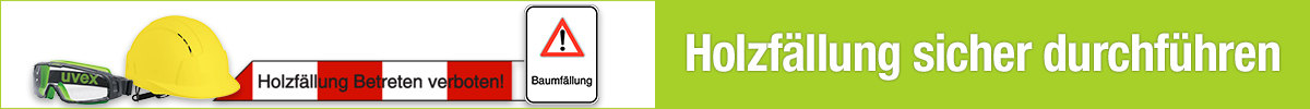 SchilderBaumfällarbeiten online kaufen - Holzfällung