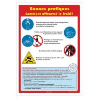 Affiche - Comment affronter le froid?