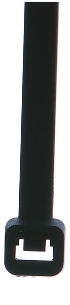 Nylon spanbandjes in zwart of naturel