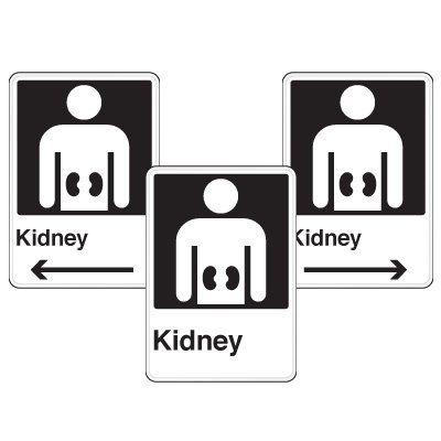 Health Care Facility Wayfinding Signs - Kidney