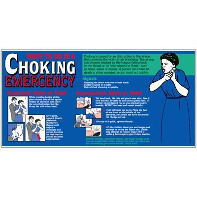 Giant Safety Posters - Choking Emergency