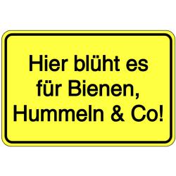 Vorlage: Hier blüht es für Bienen, Hummeln & Co!