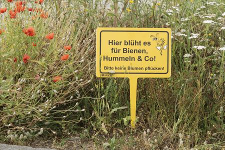 Hinweisschild Bienen