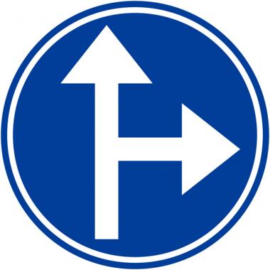 """Panneaux de circulation """"Directions obligatoires à la prochaine intersection: tout droit ou à droite"""""""