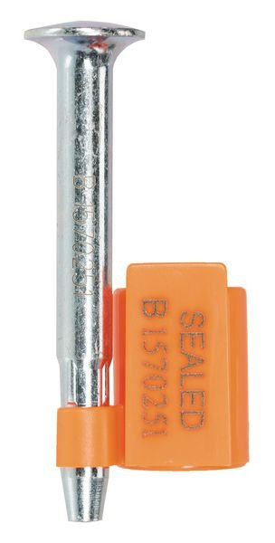 Scellé à clou avec identification pour container