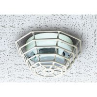 Grille de protection pour détecteurs de fumée