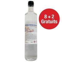Lot de 10 bouteilles de solution hydroalcoolique 750 ml (8+2 gratuites)