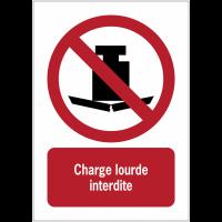 Panneaux ISO 7010 d'interdiction à message vertical - Charge lourde - P012
