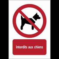 Panneaux NF EN ISO 7010 A3/A4/A5 Interdit aux chiens - P021
