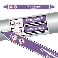 """Marqueurs de tuyauteries CLP """"Ammoniaque"""" (Acides et bases)"""
