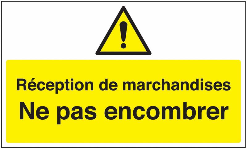Marquage au sol avec texte et pictogramme - Réception de marchandises - W001