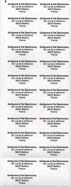 Etiquettes Duraguard en polyester laminé lite - Etiquettes de propriété sur-mesure