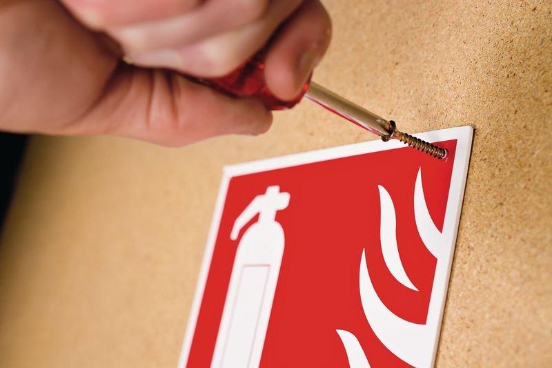 Panneau point de rassemblement NF EN ISO7010 En cas d'alerte rejoignez le point - E007 - Seton