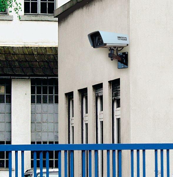 Caméra vidéosurveillance factice vitre anti-impact - Seton