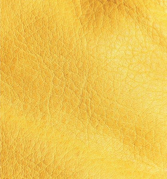 Gants anti-froid avec doublure Thinsulate - Seton