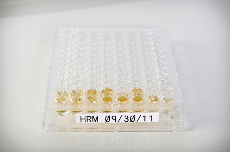 Etiquettes d'identification de plaque de puits de laboratoire pour étiqueteuse BMP21