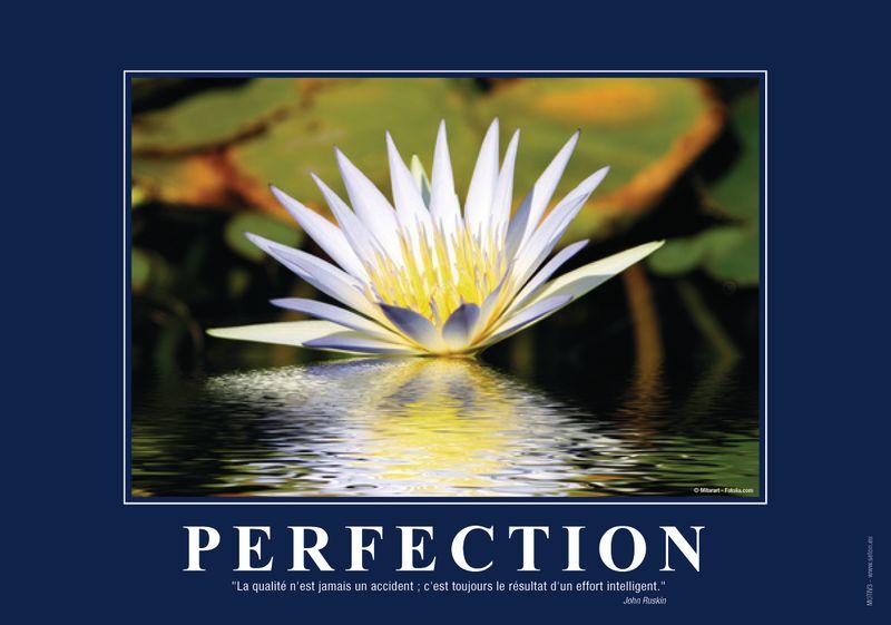 Poster de motivation format A3 plastifié: la Perfection